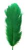 Перо страуса PRK25-30-18 (зеленый) Цена за 5 шт